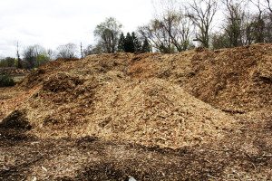Mulch and wood chips pile
